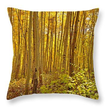 A Peek Into Heaven Throw Pillow