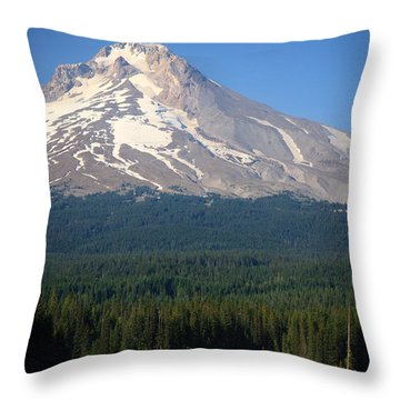 Throw Pillow featuring the photograph A Perfect Day For Fishing by Karen Lee Ensley
