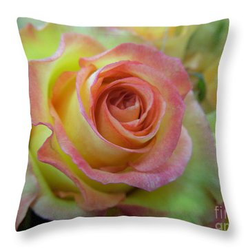 A Perfect Rose Throw Pillow