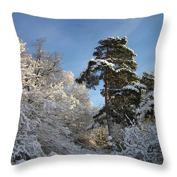 A Perfect Winterday Throw Pillow