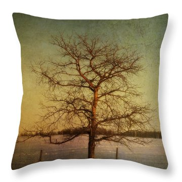 A Pictorialist Photograph Of A Lone Throw Pillow by Roberta Murray