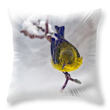 Throw Pillow featuring the photograph A Pine Warbler by Constantine Gregory