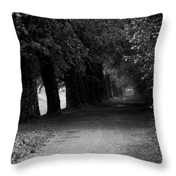 A Place For Meditation Throw Pillow