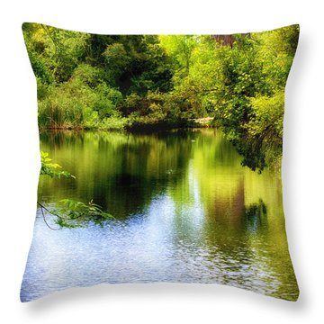 Throw Pillow featuring the photograph A Place For Peace by Joseph Hollingsworth