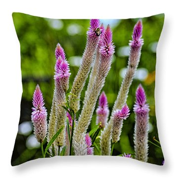A Place Of Delight Throw Pillow