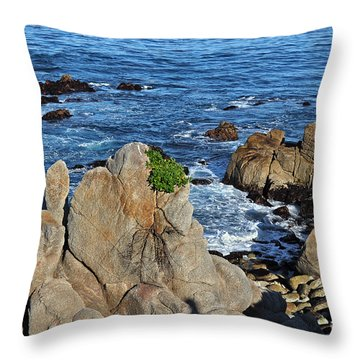 A Plant Grows On Ancient Seaside Rocks Throw Pillow by Susan Wiedmann