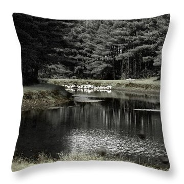 A Pond Throw Pillow