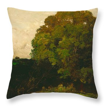 A Pond In The Morvan Throw Pillow by Charles Francois Daubigny