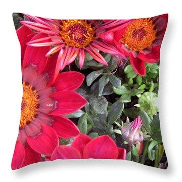A Pop Of Pink Throw Pillow by Debi Singer