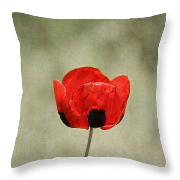 A Pop Of Red And Black Throw Pillow by Kim Hojnacki