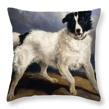 A Portrait Of Neptune Throw Pillow