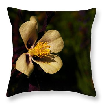 A Pretty Flower In The Sun Throw Pillow by Jeff Swan