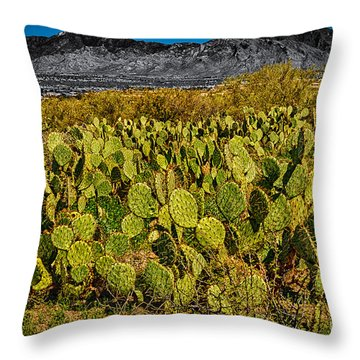 Throw Pillow featuring the photograph A Prickly Pear View by Mark Myhaver