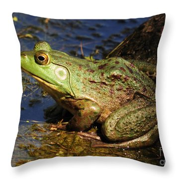 Throw Pillow featuring the photograph A Prince Of A Frog by Kathy Baccari