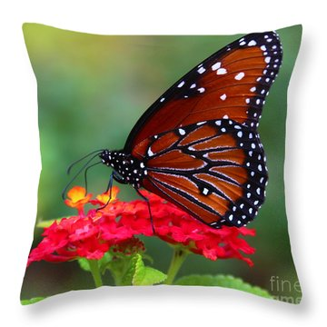 A Queen Throw Pillow by Marty Fancy
