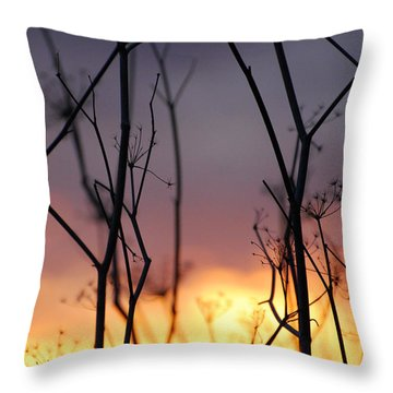 Throw Pillow featuring the photograph A Queen's Sunset by Jani Freimann
