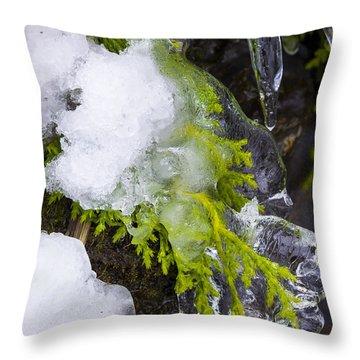 A Quick Freeze Throw Pillow