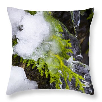 A Quick Freeze Throw Pillow by Joe Doherty