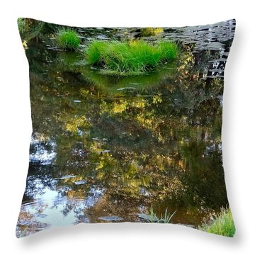 A Quiet Little Pond Throw Pillow by Ira Shander