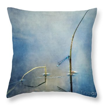 A Quiet Moment Throw Pillow by Priska Wettstein