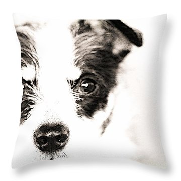 A Rat Terrier ... Mix Throw Pillow