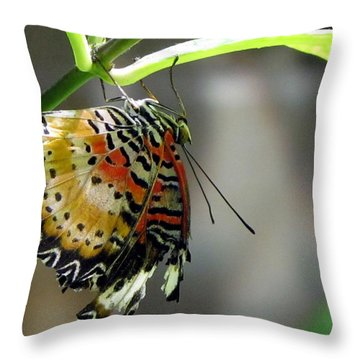 A Real Beauty Throw Pillow