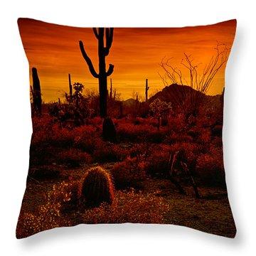 A Red Desert  Throw Pillow