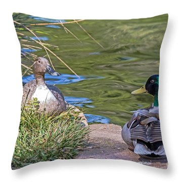 A Restful Moment Throw Pillow by Kate Brown