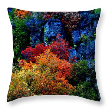 Throw Pillow featuring the photograph A Riot Of Color by Dorrene BrownButterfield