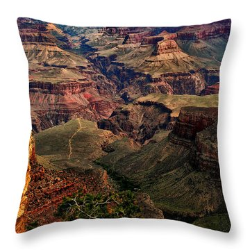 A River Runs Through It-the Grand Canyon Throw Pillow