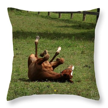 A Roll In The Hay Is For Horses Throw Pillow