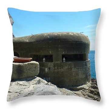 A Room With A View Throw Pillow by Adrienne Franklin