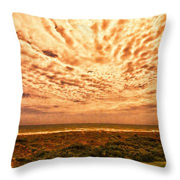 A Room With  A View Throw Pillow by J Riley Johnson