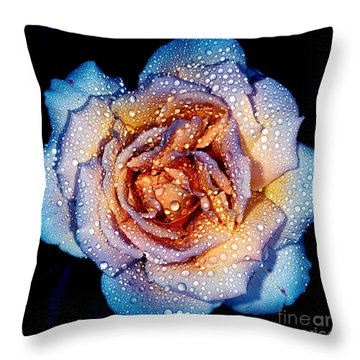 A Rose By Any Other Colour Throw Pillow