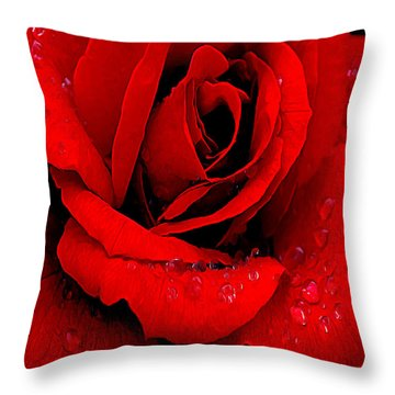 A Rose For A Sweetheart Throw Pillow by Bob and Nadine Johnston