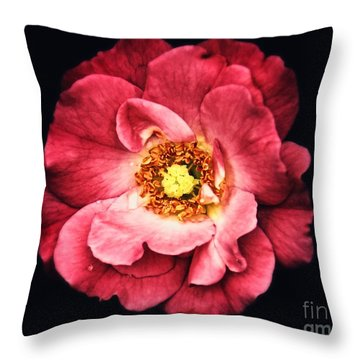 A Rose From The Shadows Throw Pillow
