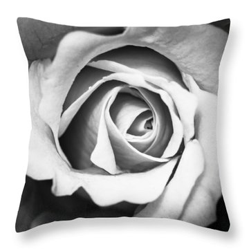 A Rose In Black And White Throw Pillow by Wade Brooks