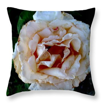 A Rose Is A Rose Throw Pillow by Fred Wilson