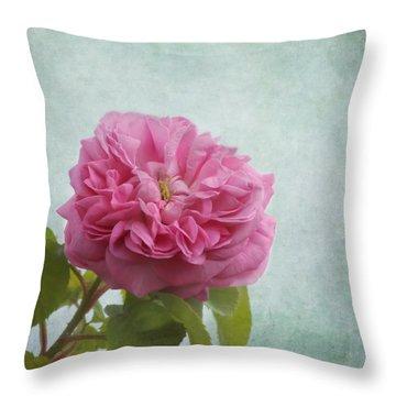 A Rose Throw Pillow by Kim Hojnacki