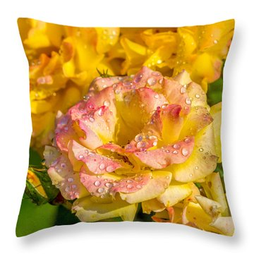 Throw Pillow featuring the photograph A Rosy Sunrise by Ken Stanback