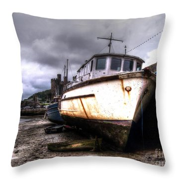 Throw Pillow featuring the photograph A Rough Ride by Doc Braham