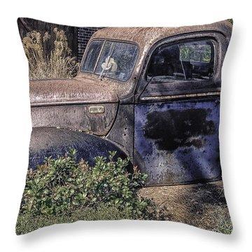 A Rustic Gem Throw Pillow