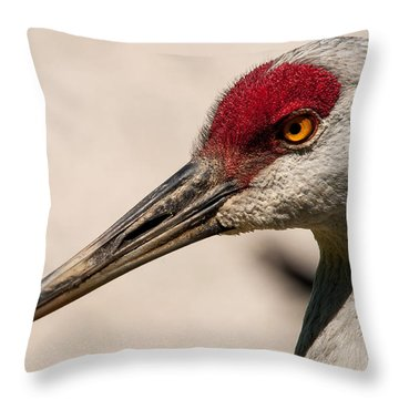 A Sandhill Crane Portrait Throw Pillow