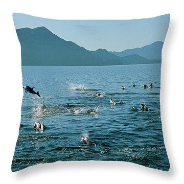 A School Of Dolphin Herding Fish Throw Pillow