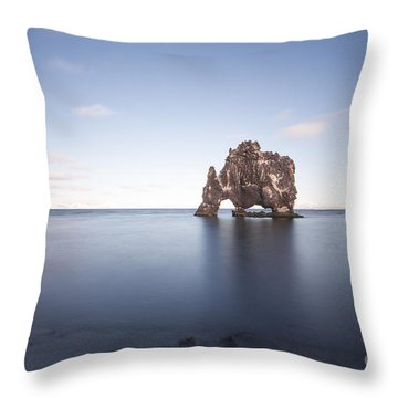 A Sea Of Thirst Throw Pillow