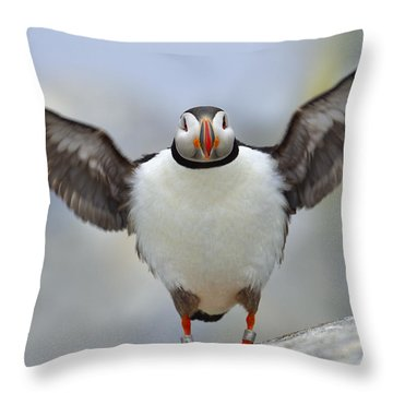 A Seaside Breeze Throw Pillow by Tony Beck
