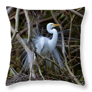 A Season Of Love Throw Pillow