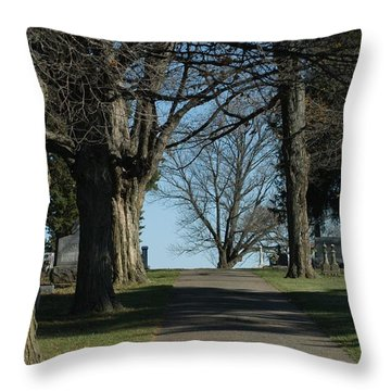 A Shared Vision Throw Pillow by Joseph Yarbrough