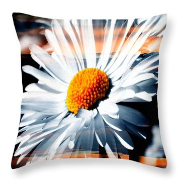 A Simple Daisy Throw Pillow