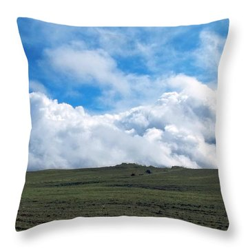 A Simple Majesty Throw Pillow